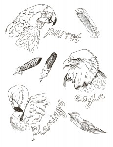LauraAliceThompson Birds