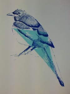 Magpie screenprint