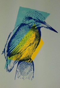 kingfisher screenprint