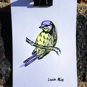 blue tit screen print